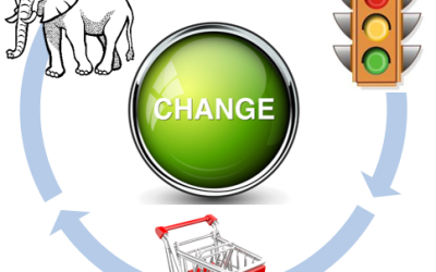 What does an elephant, a stop light, and a shopping cart have to do with Change Management?