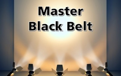 How to get an ROI from your Master Black Belt Certification