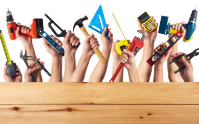 Who would you want to help you build a shed?