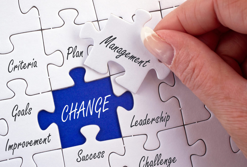 Making the Change Mindset Connection