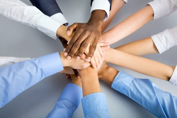 Setting Up Your Project Team For Success