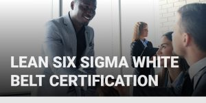 Lean Six Sigma White Belt Certification course icon.
